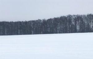 Neukirchner Plateau